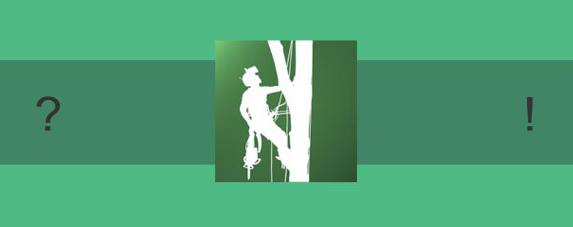 Wie wird man eigentlich Baumpfleger?