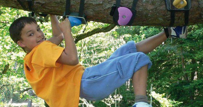 Hoch hinauf in den Baum mit den Tree-Monkey-Klettergriffen