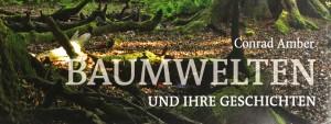 """Buch """"Baumwelten und ihre Geschichten"""" von C. Amber"""