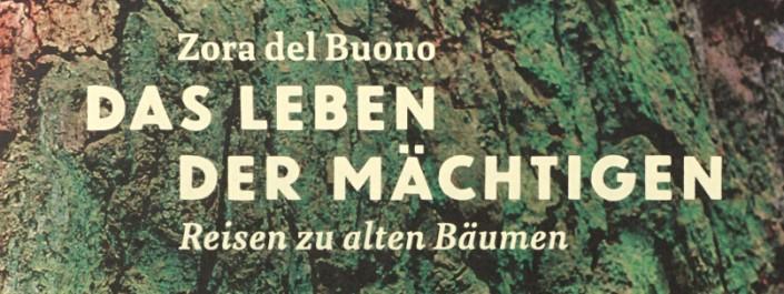 """Buch """"Das Leben der Mächtigen"""" von Z. del Buono"""