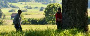Zwei Männer stehen vor einem Baumstamm und begutachten diesen