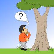 Comic: Ein Baumkontrolleur steht fragend vor einem Baum