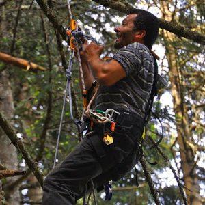 Mann mit Kletterausrüstung an einem Baum