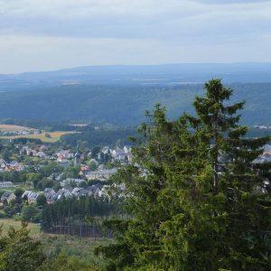 Zwei Fichten vor der Kulisse des Frankenwaldes und eines Dorfes