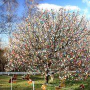 Baum mit unzähligen Ostereiern behangen