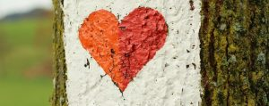 Baumstamm mit aufgemalten Herz