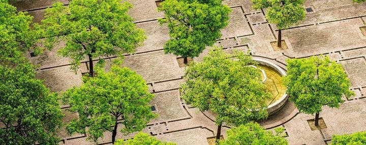 Platz in der Stadt mit zahlreichen Bäumen