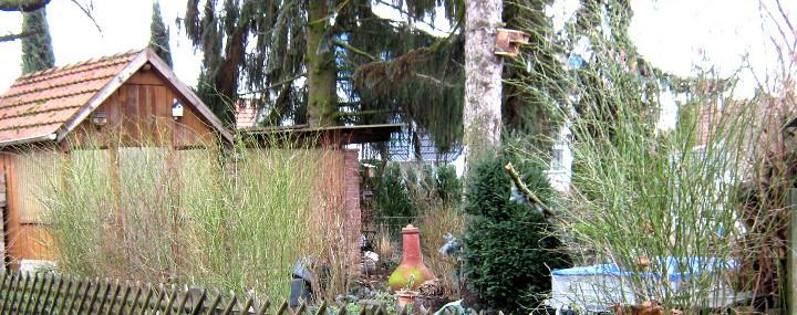 Garten mit Holzhütte, Sträuchern und Bäumen