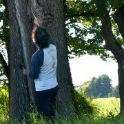Ein Mann mit Hammer und Stock untersucht einen Baum