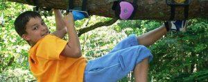 Eine Junge klettert mit Hilfe von Griffen kopfüber an einem Ast