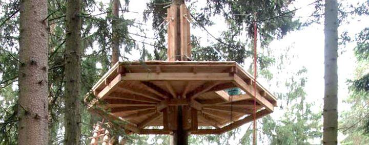 Holzplatform an einem Baum