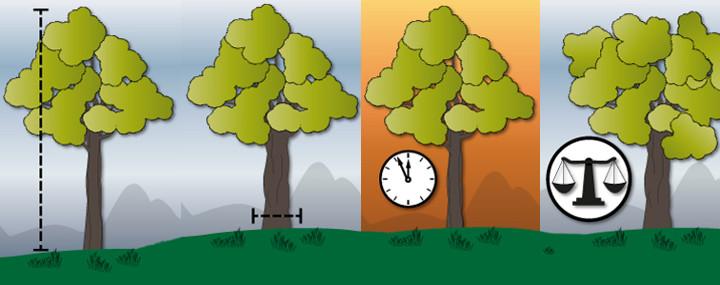 Symbolisierte Bäume in einer Reihe