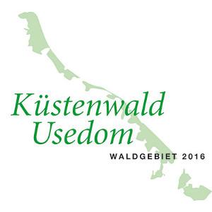 Waldgebiet des Jahres 2016: Der Küstenwald Usedom