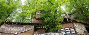 Zwischen großen Laubbaumen ist ein Baumhaus aus Holz gebaut