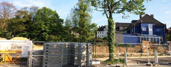 Baustelle am Straßenrand um einen Baum herum