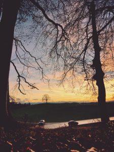Sonnenuntergang im Herbst mit Blick auf den Tree of Münsing