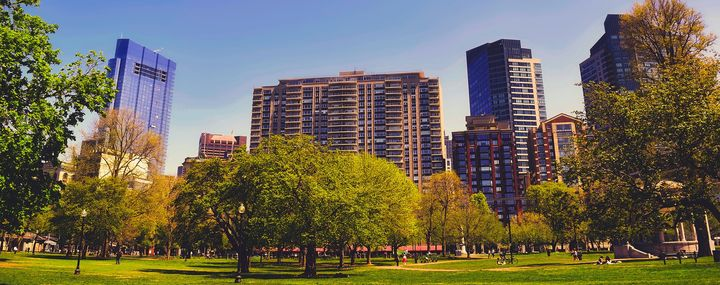 Park mit vielen Bäumen in Bosten