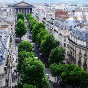 Straße mit vielen Bäumen in Paris