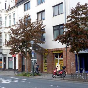 Entlang einer Straße in der Stadt stehen zwei komplett braune Ahornbäume