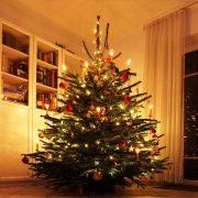 Geschmückter Weihnachtsbaum in einem Wohnzimmer
