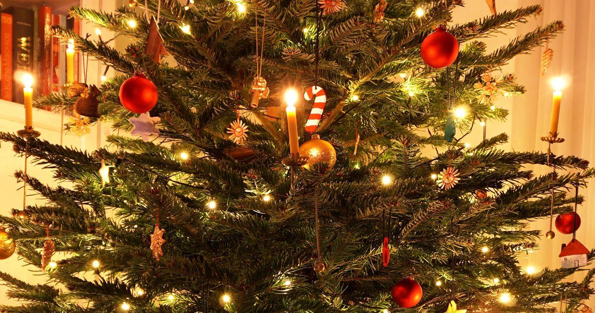 tipps damit der weihnachtsbaum l nger frisch bleibt. Black Bedroom Furniture Sets. Home Design Ideas