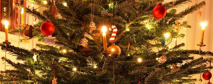 ab wann gibt es den weihnachtsbaum frohe weihnachten in europa. Black Bedroom Furniture Sets. Home Design Ideas