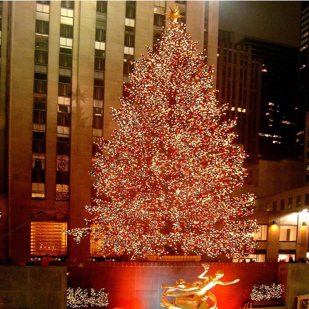 Christmas tree illustration soo viele arten einen weihnachtsbaum - Weihnachtsbaum rockefeller center ...