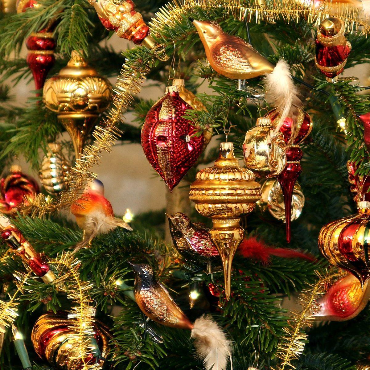 Deutscher Weihnachtsbaum.11 Fakten Und Anekdoten Zum Weihnachtsbaum Baumpflegeportal