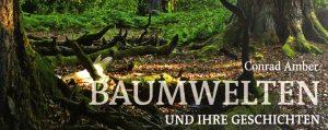 Cover des Buches Baumwelten und ihre Geschichten von Conrad Amber