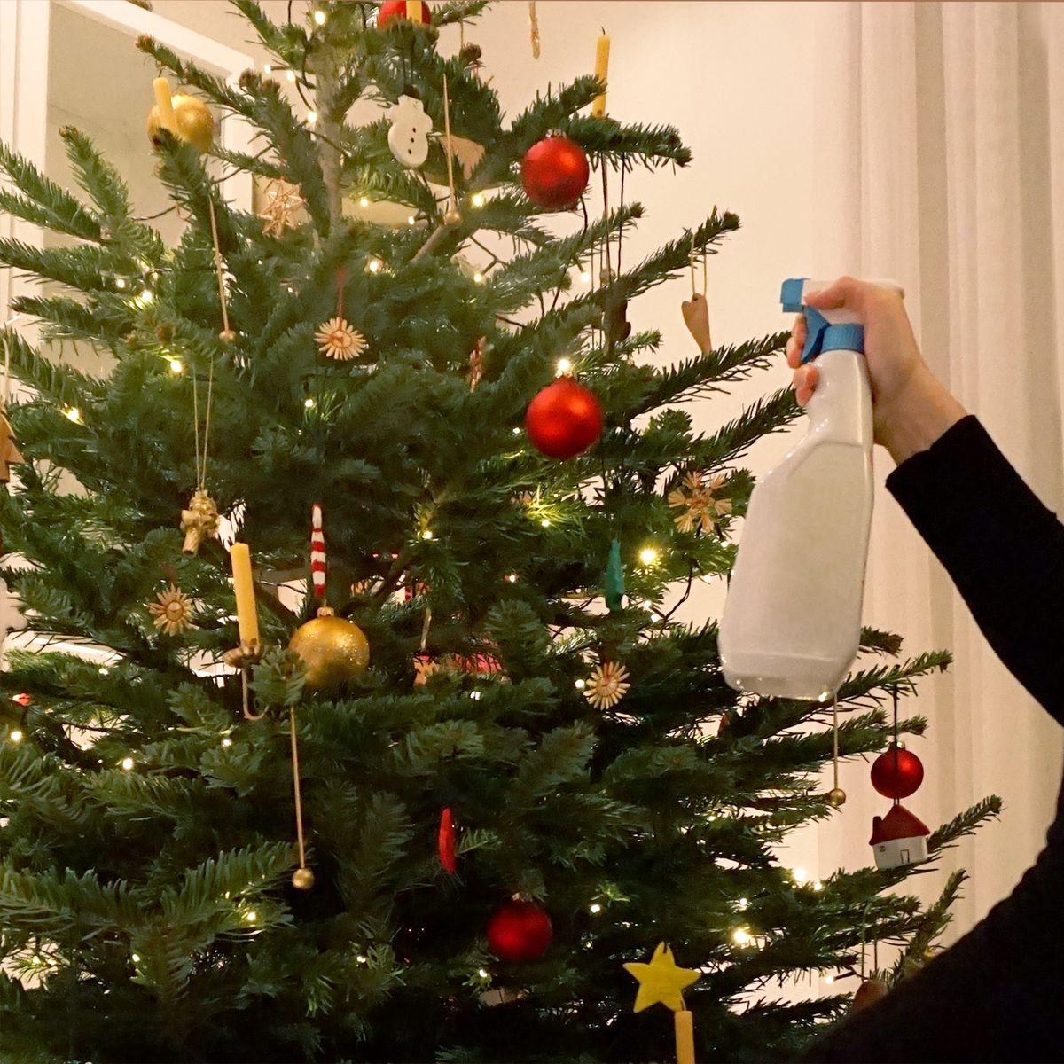 Wie bleibt der Weihnachtsbaum länger frisch?