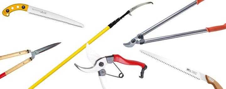 Verschiedene Werkzeuge für die Baumpflege
