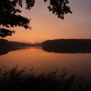 Sonnenuntergang an einem See im Wald