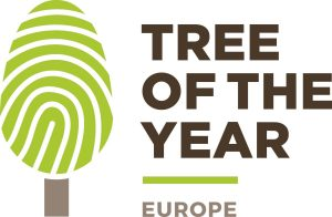 Logo European Tree of the Year 2018