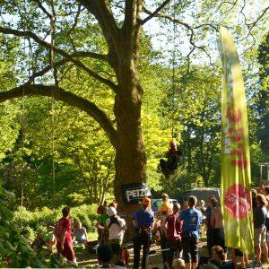 Ein Mann klettert mit einem Seil auf einen Baum