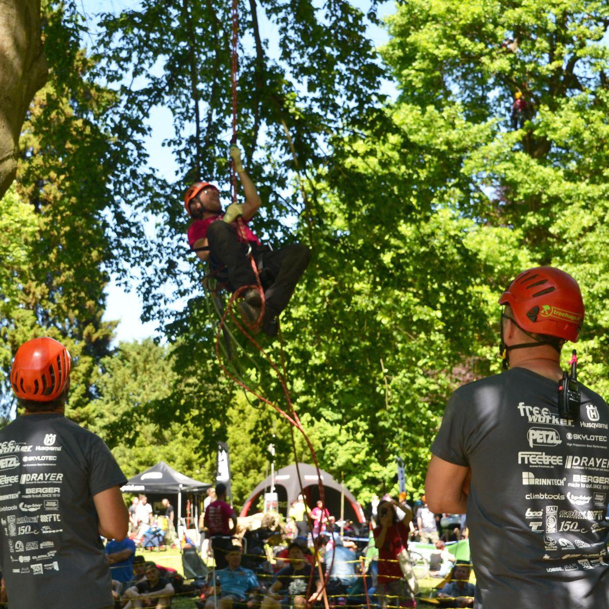 Baumkletter-Meisterschaften: Die besten Klettermaxe im Baum