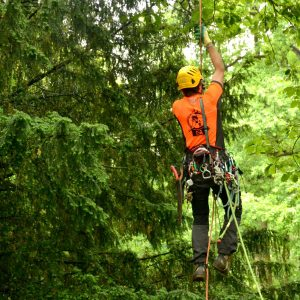 Ein Mann klettert mit vollem Gurt eine Seil hoch