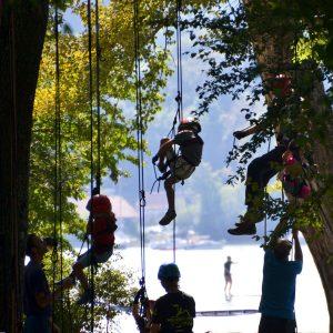Kinder klettern an einem Seil auf einen Baum