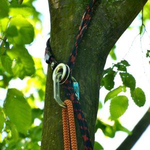 In einer Astgabel verankertes Seil