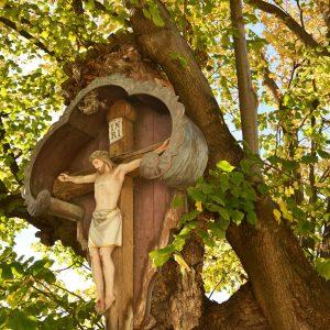 kreuz mit Jesus vor einem alten Baum