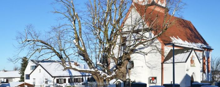 Alter Baum vor einer Kirche im Winter