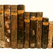 Verschiedene Bücherrücken aus Baumrinden