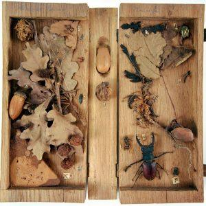 Holkasten im Buchform mit Früchten, Blättern, Käfern und Zweigen