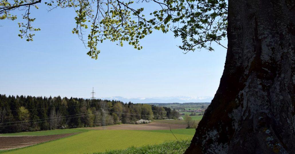 Frühlingshafte Landschaft mit Bergen im Hintergrund
