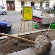 Baum mit Wurzelballen wird am Straßenrand in der Stadt gepflanzt.