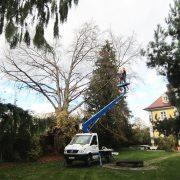 Kleiner Lastwagen mit ausgefahrener Hubbühne im Garten