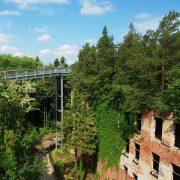 Stahlkonstruktion durch Baumkronen und Ruinen