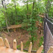 Zwischen Bäumen sind Holzpfade auf Stelzen gebaut