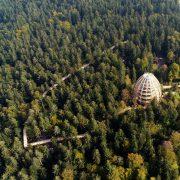 Eiförmiger Holztum und Holzpfad im Wald