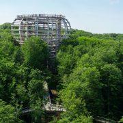 Turm aus Holz und Stahl im Wald