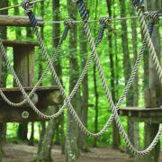 Zwischen Waldbäumen verläuft ein Kletterparcours aus Holz